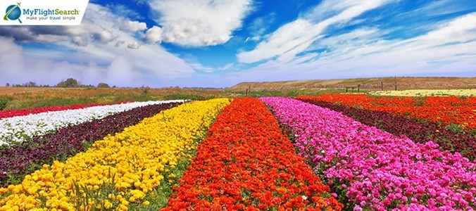 10 destinations to see the splendor of spring in its peak